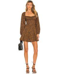 Bardot Leopard Print ミニドレス - ブラウン