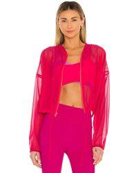Lanston Zip ジャケット - ピンク
