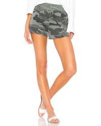 Splendid - Camo Active Shorts - Lyst