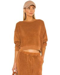The Great The Microterry Teammate Sweatshirt - Brown