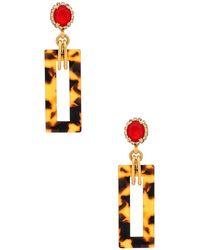 Elizabeth Cole - Effie Earrings - Lyst