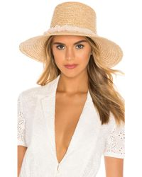 Hat Attack Lampshade Hat - Mehrfarbig