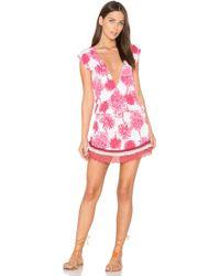 Maaji   Pomergranate Lace Dress   Lyst