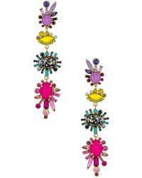 Elizabeth Cole BOUCLES D'OREILLES ROY - Multicolore