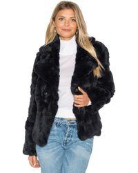 525 America Rabbit Fur Peacoat - Blue