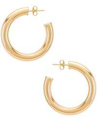 Natalie B. Jewelry Серьги-кольца Adina В Цвете Золотой - Металлик