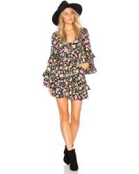 Spell & The Gypsy Collective Sayulita Frill Mini Dress - Black
