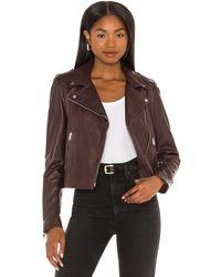 Lamarque Куртка Donna В Цвете Шоколадный - Коричневый