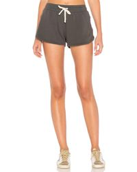 LNA Tracker Short - Gray