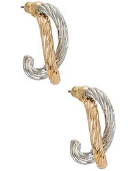 Amber Sceats Hoop Earrings - Metallic