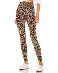 LNA Leopard Zipper Legging - Brown