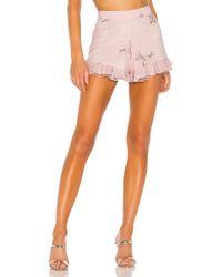 MAJORELLE Whitney Shorts - Pink