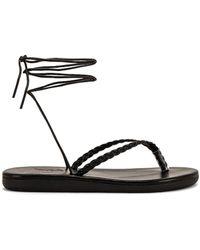 Ancient Greek Sandals Сандалии Plage В Цвете Черный