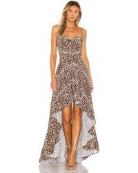 Michael Costello Макси Платье Olympia В Цвете Леопард - Многоцветный