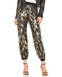 House of Harlow 1960 - Andres Pant - Lyst