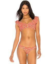 Amuse Society - Febe Bralette Bikini Top In Red - Lyst