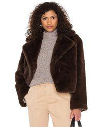 BB Dakota Big Time Plush Faux Fur Jacket - Brown