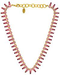 Elizabeth Cole - Ожерелье Izara В Цвете Ярко Розовый. Размер All. - Lyst