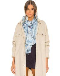 Isabel Marant Nassau スカーフ - ブルー