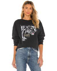 AllSaints Свитшот Panthera В Цвете Черный