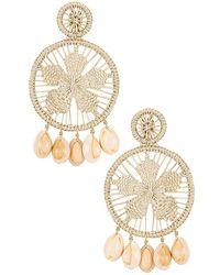 Mercedes Salazar Sunflower Clip On Earrings - Metallic