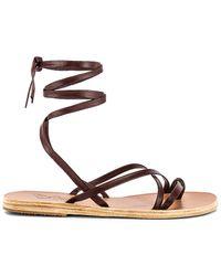 Ancient Greek Sandals Morfi ストラップサンダル - ブラウン