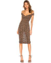MAJORELLE Платье Миди Tabitha В Цвете Желтовато-коричневый Леопардовый
