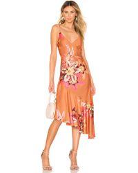 PATBO Floral ドレス - オレンジ