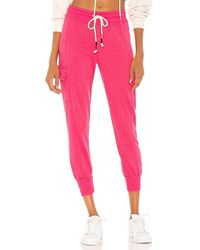 Sundry Cargo Sweatpant - Pink