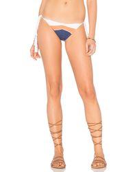 CA By Vitamin A - Nightbird Bikini Bottom - Lyst