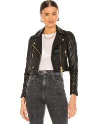 AllSaints Куртка Elora В Цвете Черный