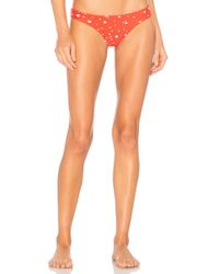 Storm - St Bart Brief Bikini Bottom In Red - Lyst