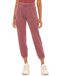 Lamade The Classic Slim Jogger - Red