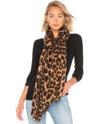 Hat Attack Leopard スカーフ - ブラウン