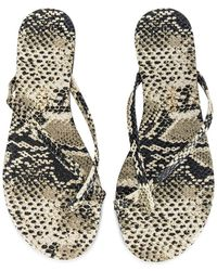 TKEES Chanclas riley - Gris