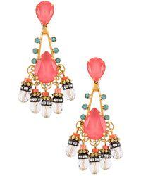 Elizabeth Cole Eloise Earrings - Mehrfarbig