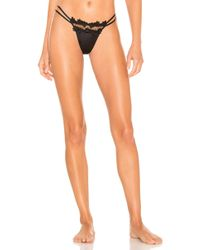 Flora Nikrooz - Showstopper Thong - Lyst