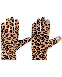 Lele Sadoughi Стирающиеся Перчатки В Цвете Леопард - Многоцветный