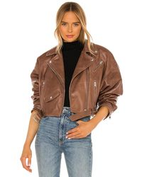 Lamarque Dylan Jacket - Brown