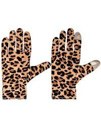 Lele Sadoughi Printed Washable Gloves - Multicolor
