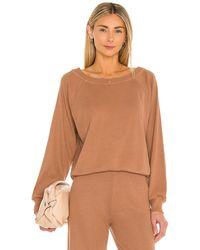 Lanston Raglan Pullover - Braun