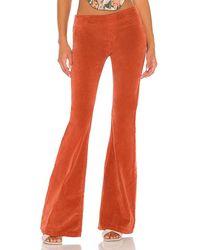 Free People Pull On Cord Flare Pant - Orange