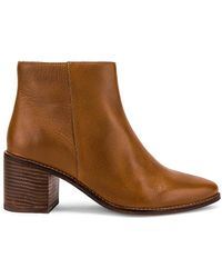 Seychelles BOTTINES FOR THE OCCASION - Marron