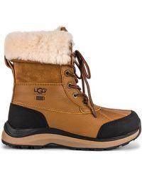 UGG Adirondack Iii ブーツ - ブラウン
