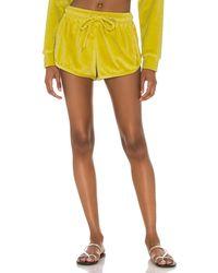 Mikoh Swimwear Шорты Luca В Цвете Фисташковый - Желтый