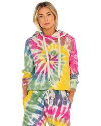 NSF Lisse Raglan Pullover Hoody - Mehrfarbig