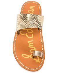 Sam Edelman Maxy Sandal In Wheat Multi & Dark Molten Gold - Brown. Size 6 (also In 6.5, 8, 8.5, 9, 9.5). - Orange