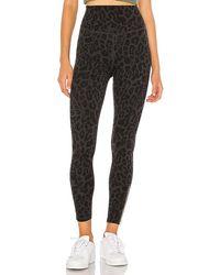 LNA Leopard Zipper Legging - Black