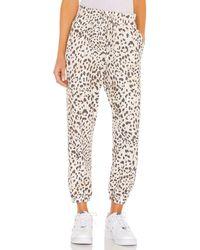 Sundry - Leopard パンツ - Lyst