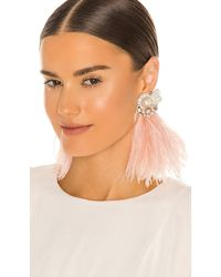 Ranjana Khan Серьги Ostrich Feather & Burnt Crystal В Цвете Румяный Розовый